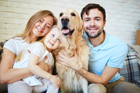 What to look for in healthy pet food for your four-legged family member